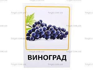 Обучающие карточки «Овощи, фрукты и ягоды», VT1301-02, купить