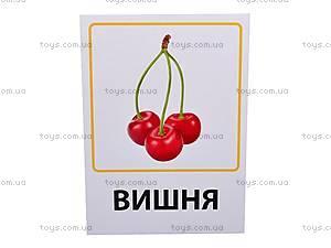 Обучающие карточки «Овощи, фрукты и ягоды», VT1301-02, детские игрушки