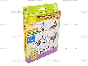 Обучающие карточки «Транспорт и лесные жители», VT1301-04, игрушки