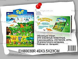 Обучающий плакат «Животные», EH80030R