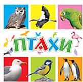Обучающие карточки «Птицы», 70629