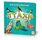 Обучающая книга «Птицы», 70629, toys.com.ua