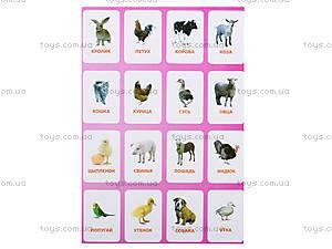 Обучающие карточки «Домашние животные», , купить