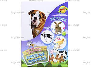 Обучающие карточки «Домашние животные», , фото