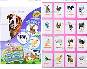 Обучающие карточки «Домашние животные»,