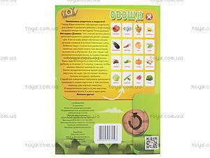 Обучающие карточки «Овощи», , купить