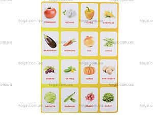 Обучающие карточки «Овощи», , отзывы