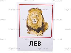 Обучающие карточки «Зоопарк, предметы быта», VT1301-01, игрушки
