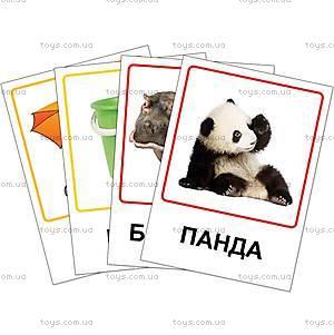 Обучающие карточки «Зоопарк, предметы быта», VT1301-01, магазин игрушек