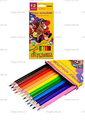 Карандаши цветные Marco «Пегашка», 12 цветов, 1010-12CB