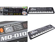 Детское музыкальное пианино с микрофоном, MQ-010FM