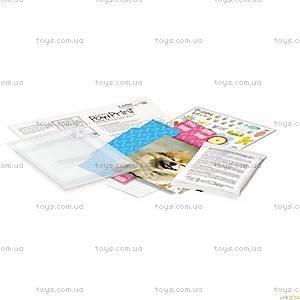Отпечаток лапы домашнего любимца, 00-04572, купить