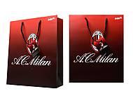 Пакет бумажный подарочный Milan, ML14-266K, купить