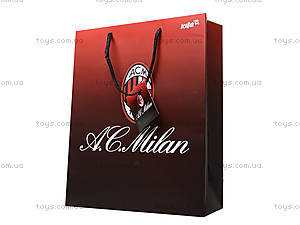 Пакет бумажный подарочный Milan, ML14-266K, цена