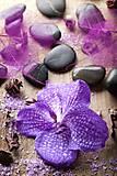 """Пакет ламинированый """"Орхидея"""", по 6шт в упак, 81"""