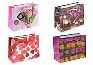 Пакет бумажный с рисунком (12 штук), АРЕ2842-2843-2844-2846, купити