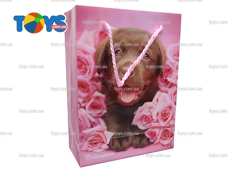Пакет подарочный бумажный ламинированный 360х130х85 мм с блестящей крошкой