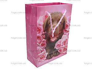 Пакет подарочный Rachael Hale, пластиковый, R13-204K, фото