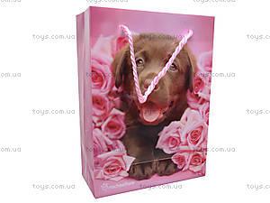 Пакет подарочный Rachael Hale, пластиковый, R13-204K
