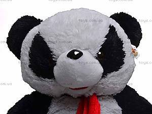 Панда с шарфом, 1882/45, фото