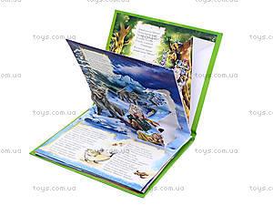 Книга с панорамой «Айболит», М115005Р4326, фото