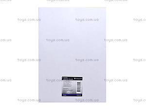 Папка для черчения А4, 10 листов, 75902-NV, купить