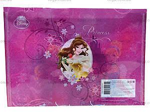 Папка-конверт с застежкой «Принцессы», PRAB-US1-PLB-EN15, фото