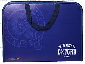 Папка-портфель на молнии «Оксфорд», 491021, купить