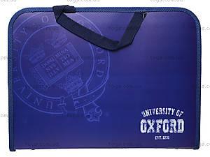 Папка-портфель на молнии «Оксфорд», 491021