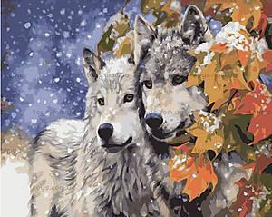 Пара волков, рисование по номерам, КН2434