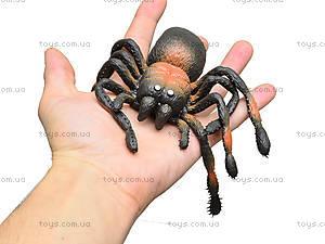 Набор пауков-тянучек, 6 штук, A123DB, купить