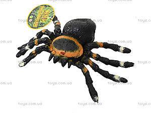 Детский набор игрушечных пауков, 7426, цена