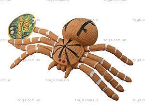 Детский набор игрушечных пауков, 7426, игрушки