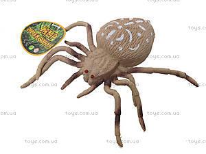 Детский набор игрушечных пауков, 7426, детские игрушки
