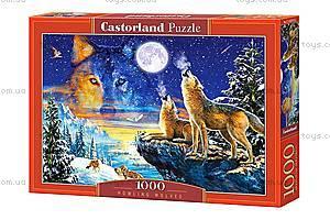 Пазл Castorland на 1000 деталей «Волки», С-103317, купить