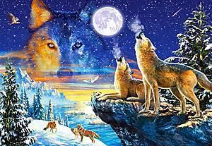 Пазл Castorland на 1000 деталей «Волки», С-103317