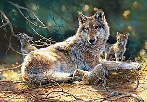 Пазл Castorland на 1500 деталей «Волки», С-151400