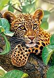 Пазл Castorland на 1500 деталей «Ягуар на дереве», С-151493