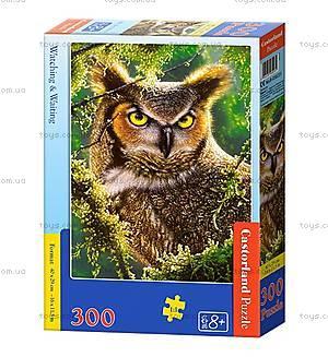 Пазл Castorland на 300 деталей «Сова. Наблюдение», В-030231, купить
