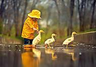 Пазл Castorland на 500 деталей «Друзья и дождливый день», В-52264, отзывы