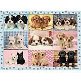Пазл детский Ravensburger «Прелестные щенки», 12769, фото