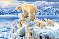 Пазл на 1000 деталей «Арктическое королевство», С-102525