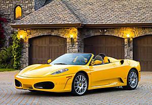 Пазл на 1000 деталей «Ferrari F430 Spider», С-102310