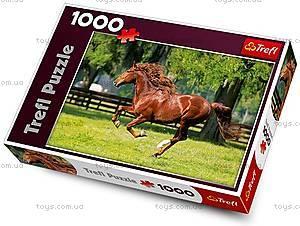 Пазл на 1000 деталей «Мчат кони», 10201