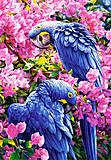 Пазл на 1000 деталей «Синие попугаи», С-102242, купить