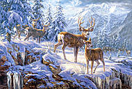 Пазл на 1000 деталей «Свет в зимних горах», С-102501, купить