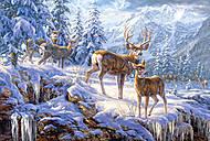 Пазл на 1000 деталей «Свет в зимних горах», С-102501
