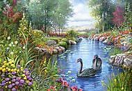 Пазл на 1500 деталей «Черные лебеди», C-151042, купить