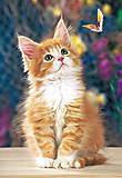 Пазл на 260 деталей «Котёнок и бабочка», B-26562, купить