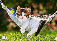Пазл на 260 деталей «Котёнок в гамаке», B-26869, купить